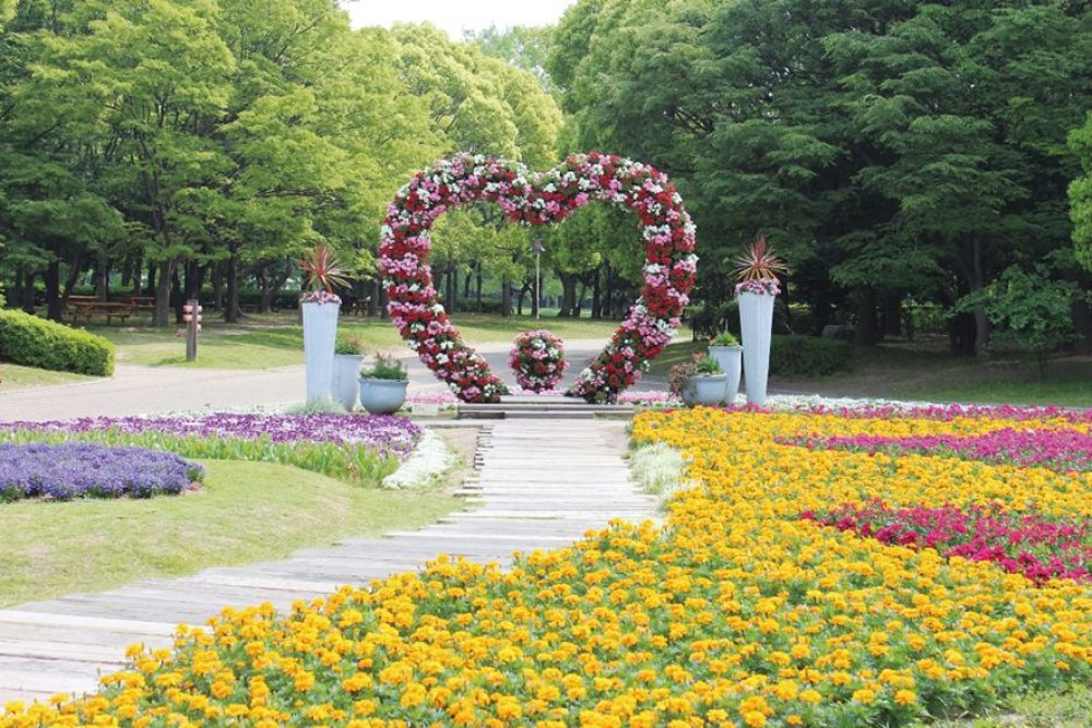 Nagai Botanical Garden | Facilities you can enter/use for